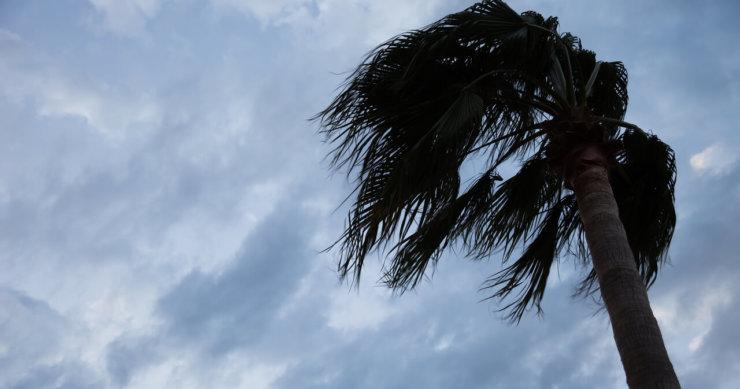 An Update from Florida Before Hurricane Irma
