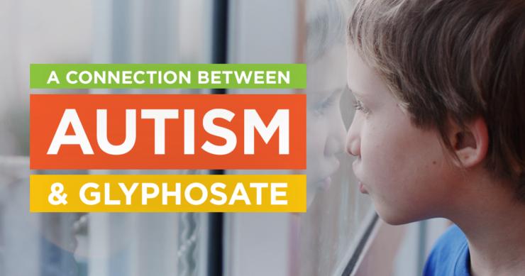 GMO and Autism