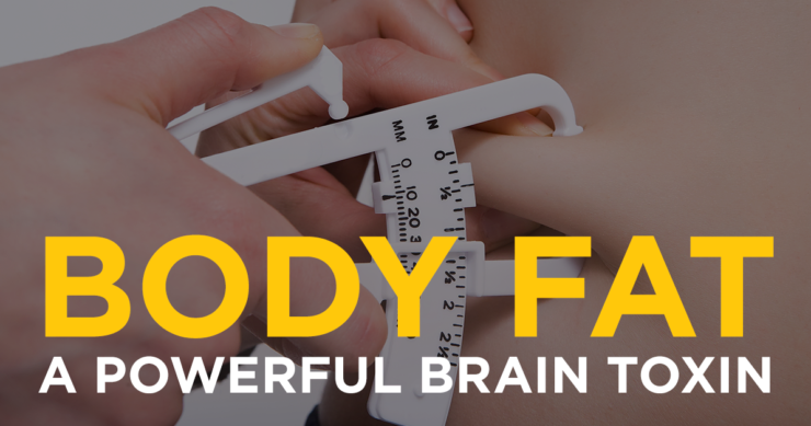 Body Fat – A Powerful Brain Toxin