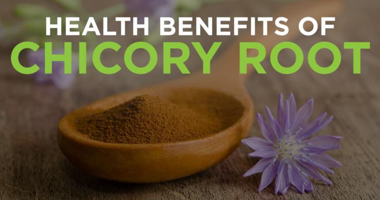 Health Benefits of Chicory Root