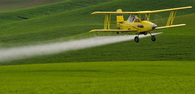 Pesticides Increase Risk for Neurodegenerative Conditions