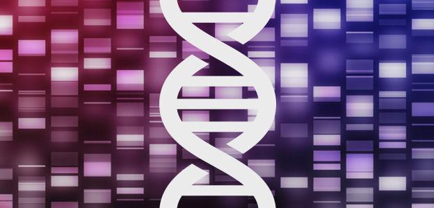 Dietary Epigenetics: New Frontiers