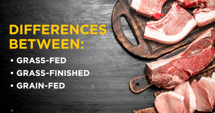 Differences Between Grass-Fed, Grass-Finished, and Grain-Fed Beef