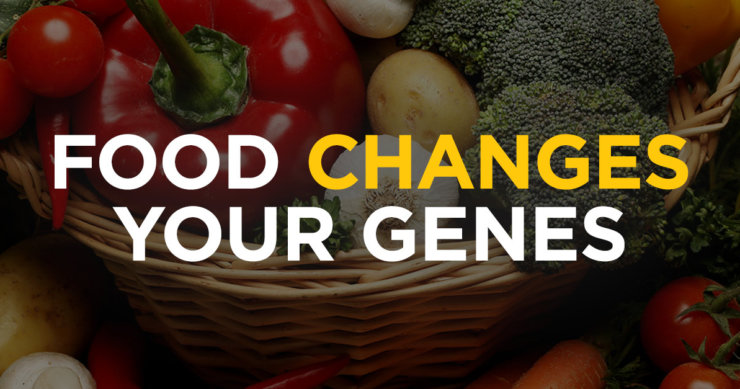 Food Choices Change Our Gene Expression