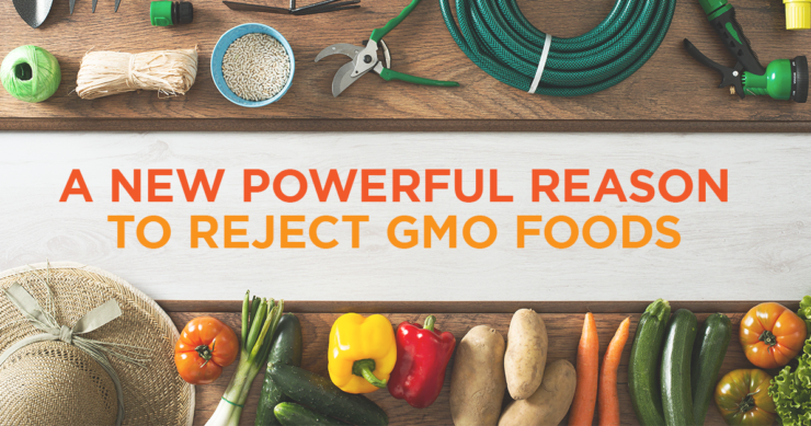 A New Powerful Reason to Reject GMO Foods