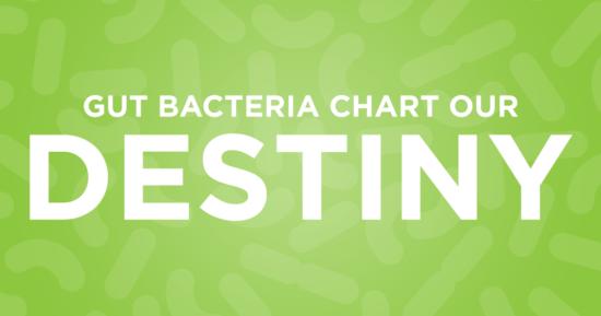 Gut Bacteria Chart Our Destiny