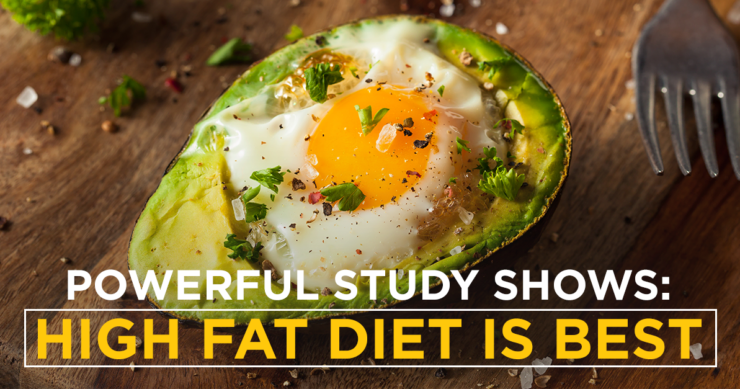 Powerful New Study Shows High-Fat Diet is Best