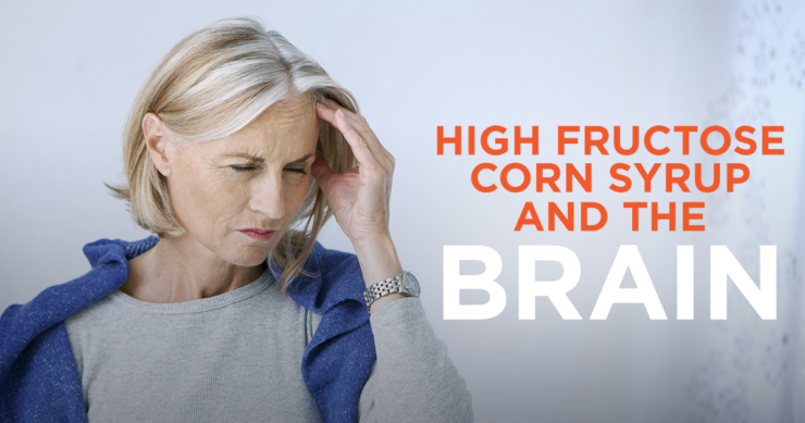 High Fructose Corn Syrup and the Brain