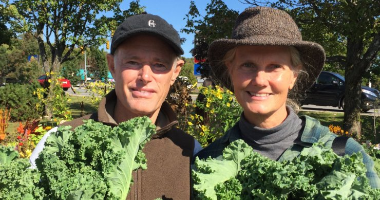 Kale – What You Probably Didn't Know