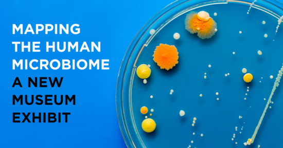 Mapping the Human Microbiome – A New Museum Exhibit