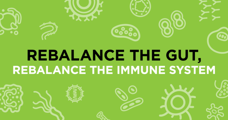 Rebalance the Gut, Rebalance the Immune System