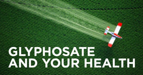 Another Important Threat Posed by GMO Food
