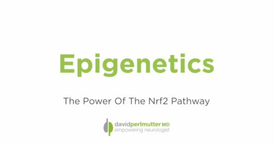Epigenetics – The Power Of The Nrf2 Pathway
