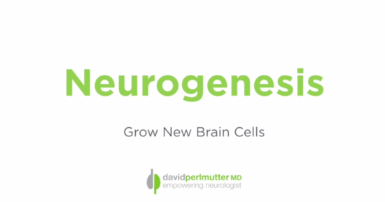Neurogenesis – Grow New Brain Cells Through Exercise