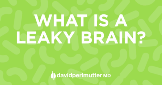 What on Earth is a Leaky Brain?