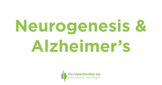 Neurogenesis & Alzheimer's: A Correlation?