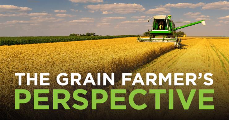 The Grain Farmer's Perspective