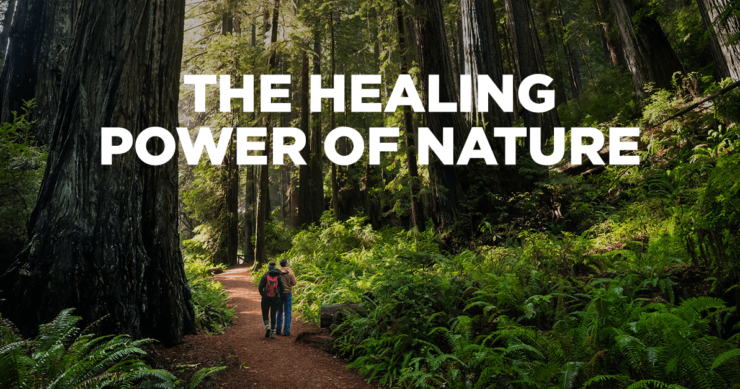 On The Healing Power of Nature