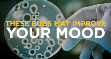 These Bugs May Improve Your Mood