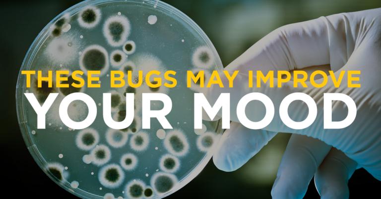 bugs_improve_mood